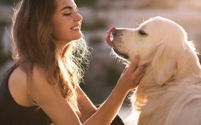 8 Ways to Market Your Pet Business